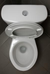 toilet Istvan Benedek